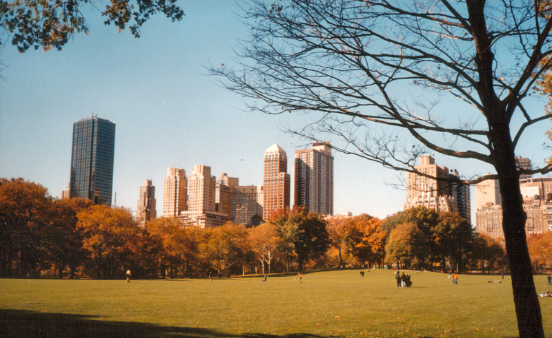 800px-Centralpark.png