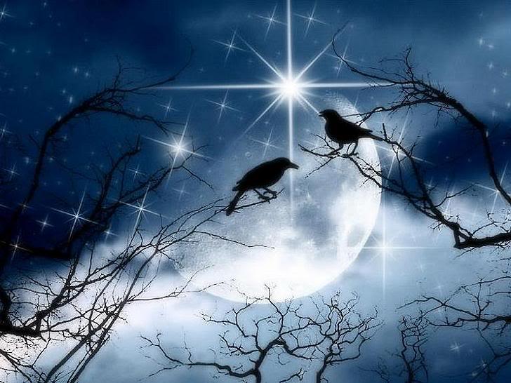 Crows_by_moniqee.jpg