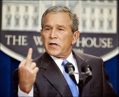er-is-bush.jpg