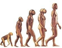 evrim.jpg