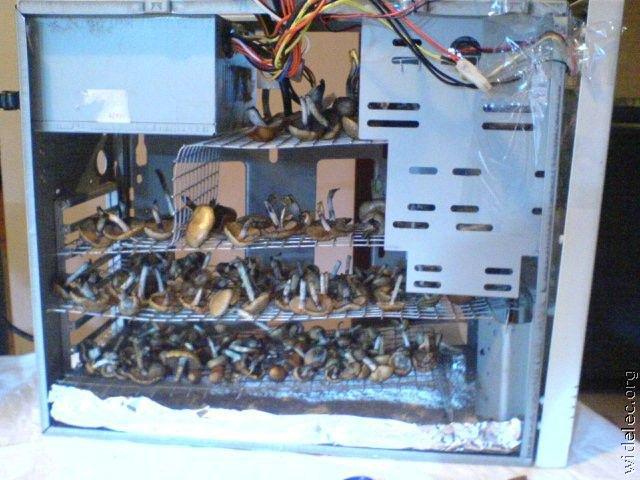 komputery_39.jpg