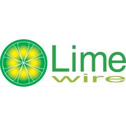 LimeWire-preagteste-filtre-de-continut-2.jpg