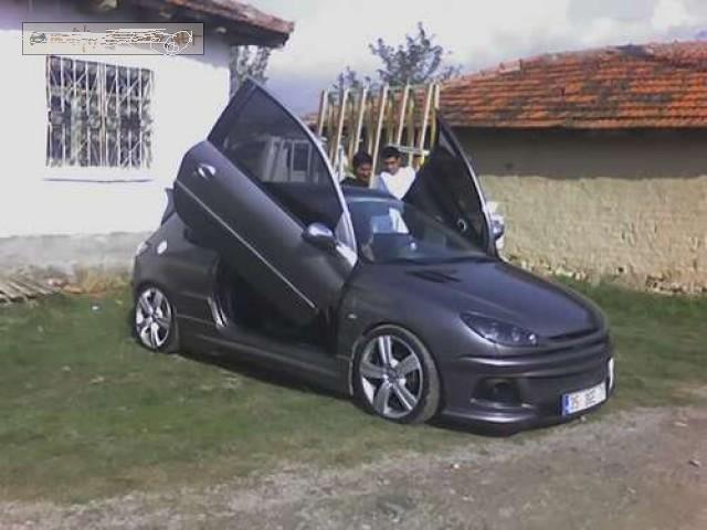 Modifiyeli_Peugeot_206_s.jpg