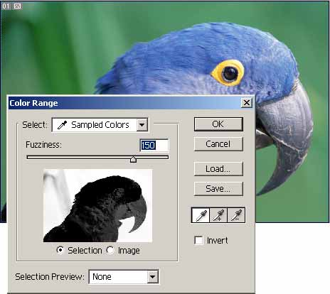 papagan-colorr.jpg